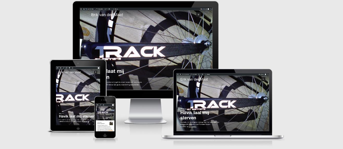 website Erik van der Maat 2016